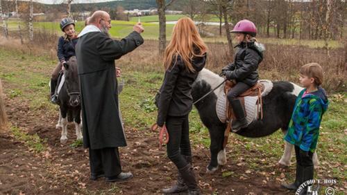 HP Pferd 2 w1000